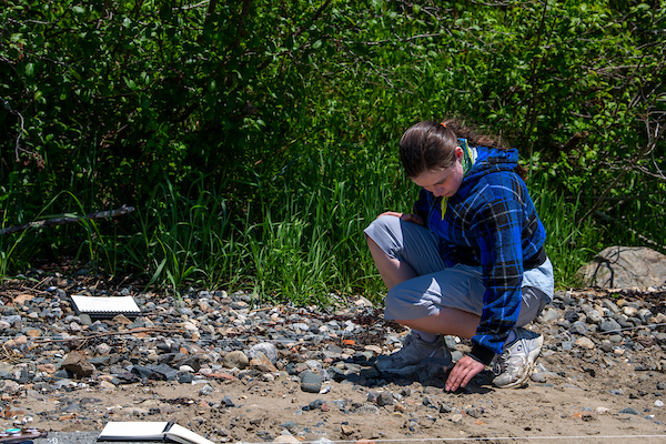 Student combing the shore