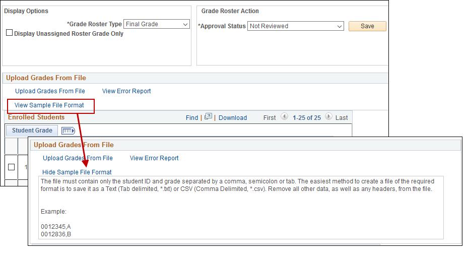 View Sample File Format